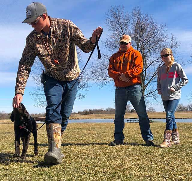 Hunting Dog Training as a puppy
