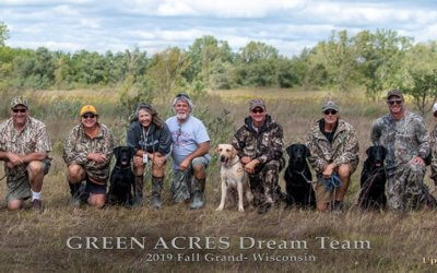 Grand Hunting Retriever Champions!!!